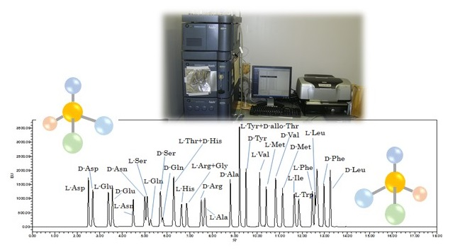 Separation of D- and L-amino acids by ultra-performance liquid chromatography